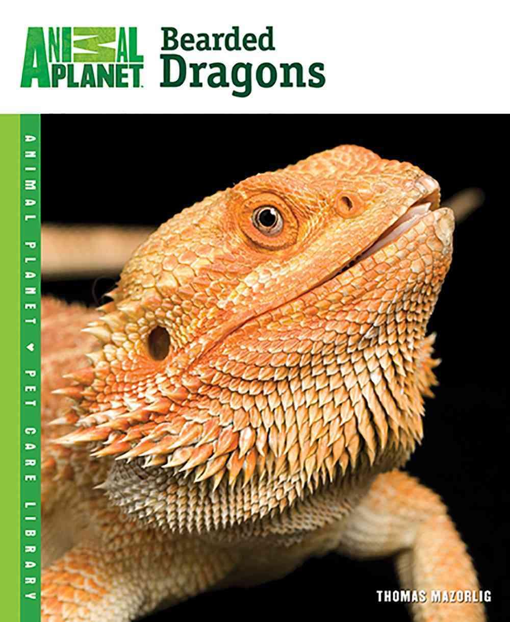 Bearded Dragons By Mazorlig, Thomas
